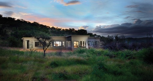 Your 4 day South Africa vacation features the Shepherd's Tree Game Lodge
