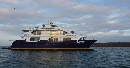 Enjoy a Galapagos Cruise on board the MC Endemic