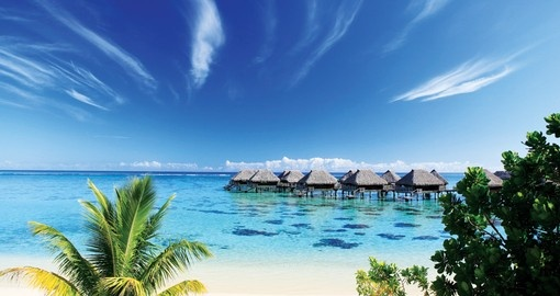 Explore all the amenities of the Hilton Moorea Lagoon Resort and Spa during your next Moorea vacations.