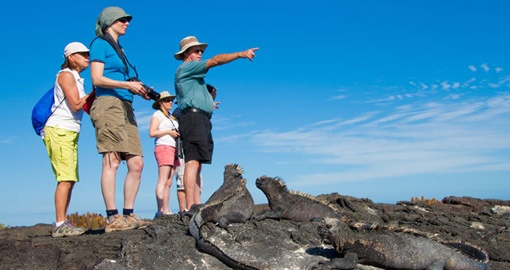 Explore the Islands on your next Galapagos Tours.