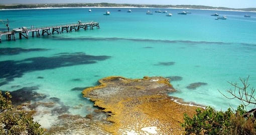 Vivionne Bay, Kangaroo Island - Voted Best Beach