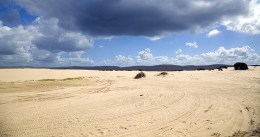 Beautiful sand dunes, Port Stephens