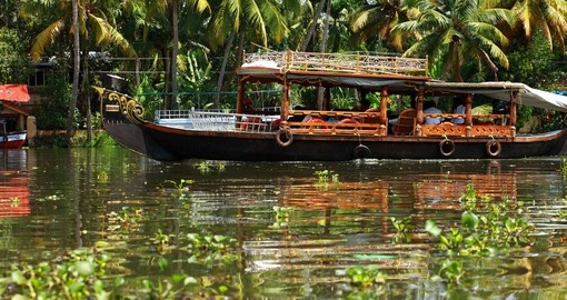 Tropical forest in backwater of Kochin