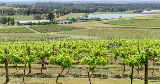 Visit some beautiful wineries and sample decadent chocolate on your Australia Vacation