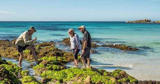 Learning about local flora on Tasmania's coast