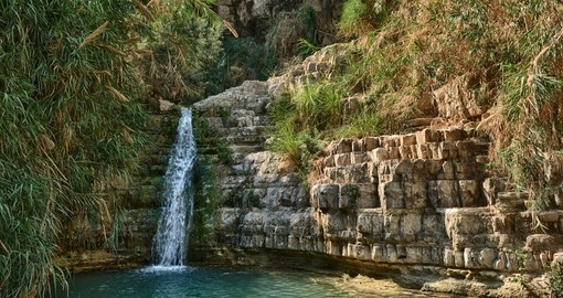 You will see the Ein Gedi Reserve during your trip to Israel.