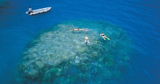 Enjoy snorkelling the Great Barrier Reef on your next Australia tours.