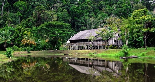 Trek through the forest in Sarawak and interact with local communities on one of your Malaysian Tours