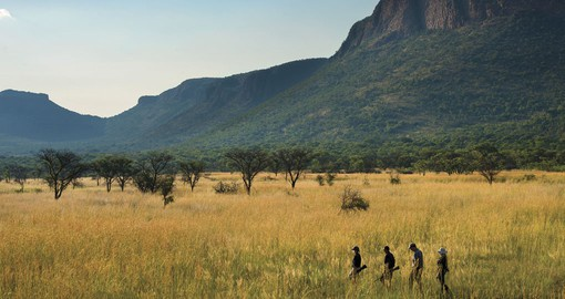 Marataba walking safaris