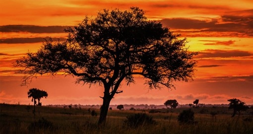 Travelling to Uganda includes the spectacular Africa sunsets