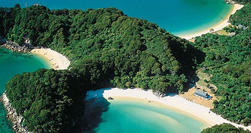 Enjoy the mix of both lush greenery and clean beaches in and around Abel Tasman National Park during your New Zealand Vacation