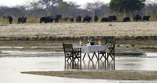 Romantic Breakfast and Game Viewing