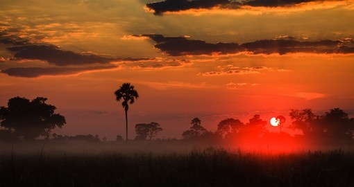 Sunrise above the misty Delta grasslands is always a great photo opportunity on all Botswana safaris.