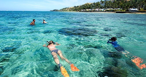 Snorkeling on the Coral Lagoon