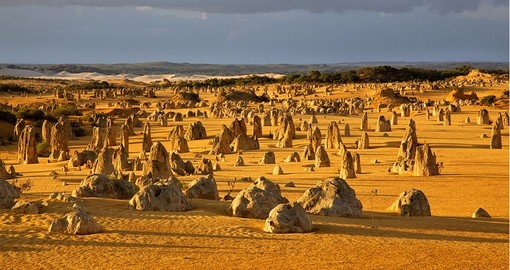The Pinnacles Desert is one of country's best known landscapes and is a great addition to all Australia vacations.