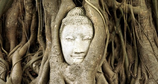 Discover the magnificent Buddha head that has been encased by a tree on your Trip to Thailand