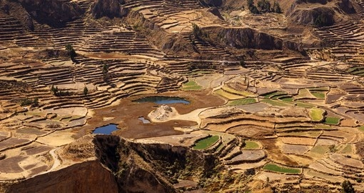 Take a trip trough Colca Canyon on your Peru Trip