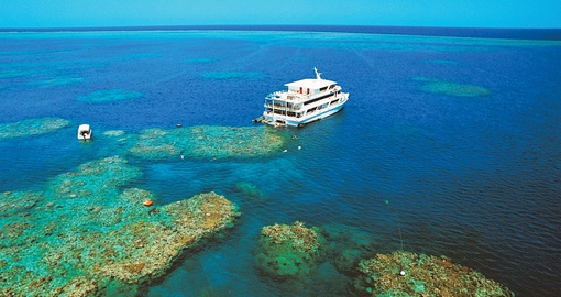 Explore the Great Barrier Reef on your next tour to Australia.