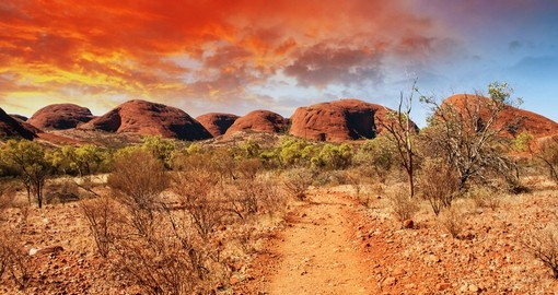 Enjoy Beautiful Colors and Landscape of Australian Outback during your next Australia tours.
