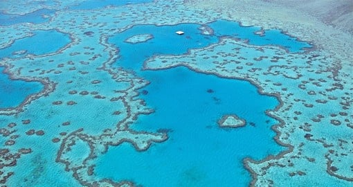 Great Barrier Reef Tours Trips To Australia Goway - Vacation to australia