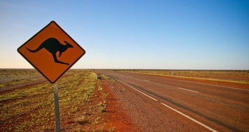 Kangaroo crossing road sign in the outback