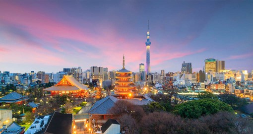 Dazzling Tokyo is an intriguing blend of traditional culture and the 21st century