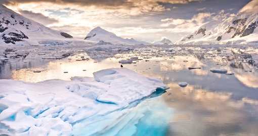 Experience inspiring landscapes on your Antarctica Cruise