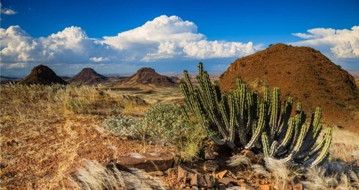 Enjoy desert landscape on your Namibia Tour