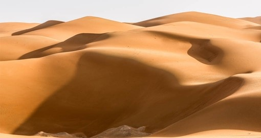 A visit to the Liwa Desert is part of your vacation in Abu Dhabi