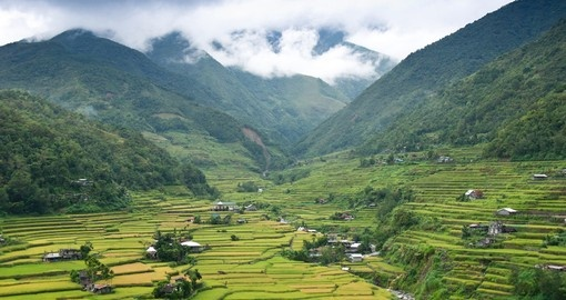 Explore the hillside region surrounding Manila and visit some of the many rice terraces on your Philippine Vacation