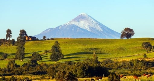 See almost symmetrical Osorno Volcano on your Chile Vacation