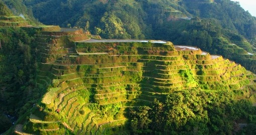 Learn about cultivation efforts made by locals regarding rice plantations on one of your Philippine Tours