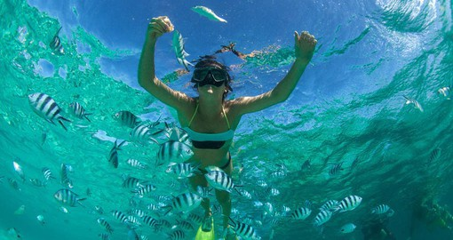 Mauritius offers world-class diving and snorkelling