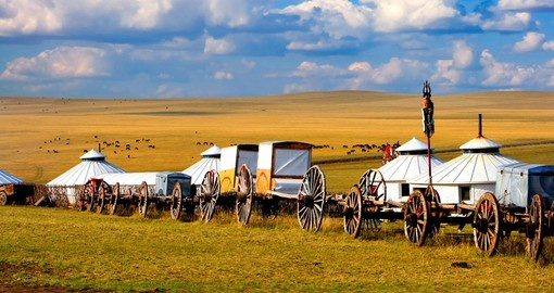 Migration transport in Inner Mongolia