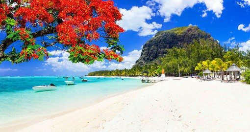 Mauritius is renown for its powder-white beaches, crystal blues waters and luxury resorts