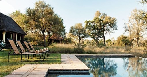 Take a dip in the swimming pool at Kings Camp during your South Africa vacation.