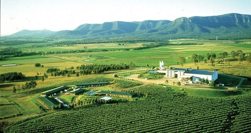 Beautiful Hunter Valley Wine Region
