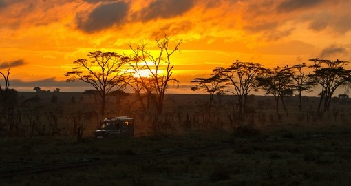 Experience magical Safari Sunrise on your next trip to Tanzania.