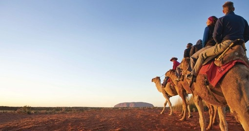 Ride on a camel through the outback at night in order to enjoy Uluru/Ayers Rock during your Australia Vacation