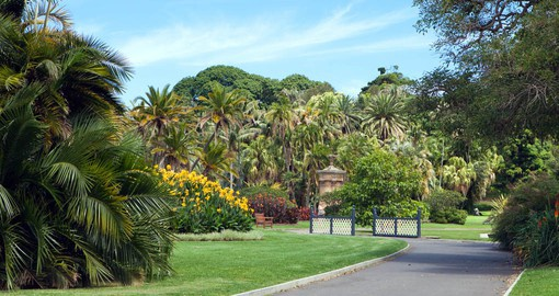 The Royal Botanic Garden, Sydney has existed for more than 200 years