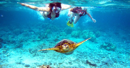 Go snorkelling on your Belize Tour
