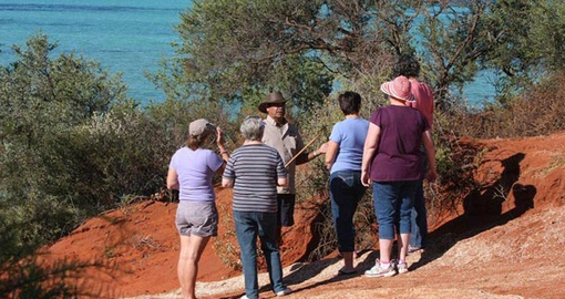 Enjoy an informative wilderness half day tour on your Australia Vacation