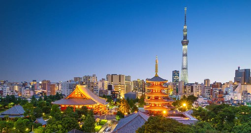 Tokyo, the Japanese capital is one of the world's largest cities