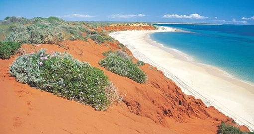 Take in the spectacular Shark Bay World Heritage Site on your Australia Vacation