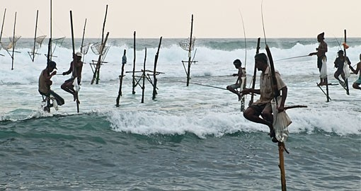 Standing on a single timber pole to fish is unique to Sri Lanka