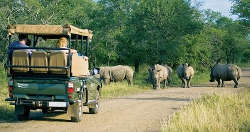 Enjoy magical safari during your next trip to South Africa.
