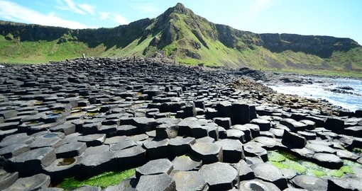 The Giant's Causeway will be a highlight of your Ireland tour