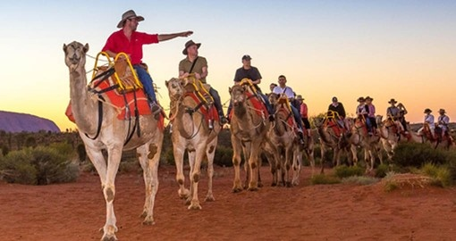 Ride a camel to watch the sunset over Ayers Rock as part of your Australian Vacation