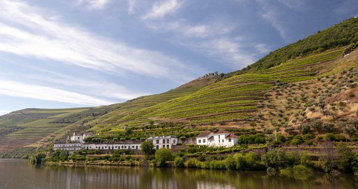 The Douro Valley is the oldest demarcated wine region in the world
