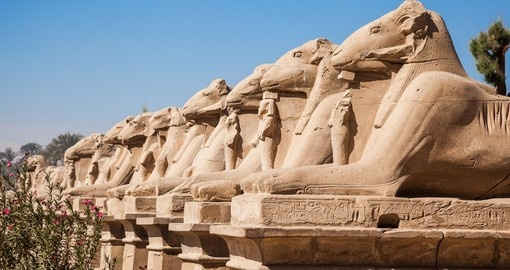 Enjoy avenue of the ram-headed Sphinxes on your next Egypt tours.